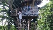 観光協会3号ツリーハウス